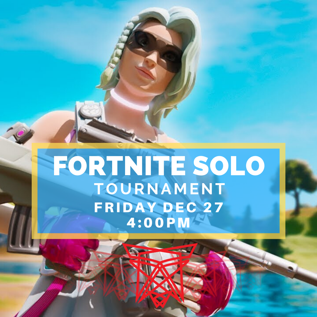 Fortnite Solo Nov 29 (1)